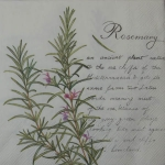 IH469460 - Rosemary cream -Serwetki do decoupage - 2szt